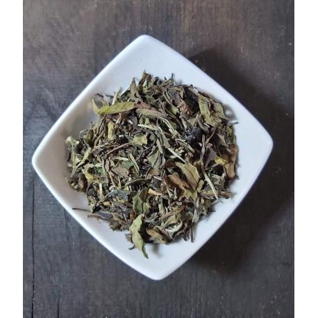 Fehér tea (szűz tea)