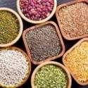 Adalékmentes zöldség szárítmányok